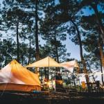 【體驗夥伴募集!】富士の麓 キャンプの達人と行く、ローカル富士エリア探索&手ぶらでグランピング キャンプ体験 のご案内