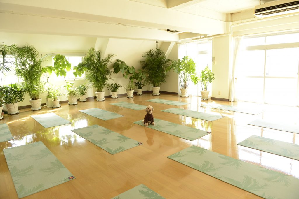 02BIO WELLNESS YOGASTUDIO-2MB