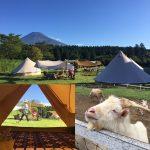 【9-10月秋季限定参加者募集!】富士山豪華露營+在地深入體驗