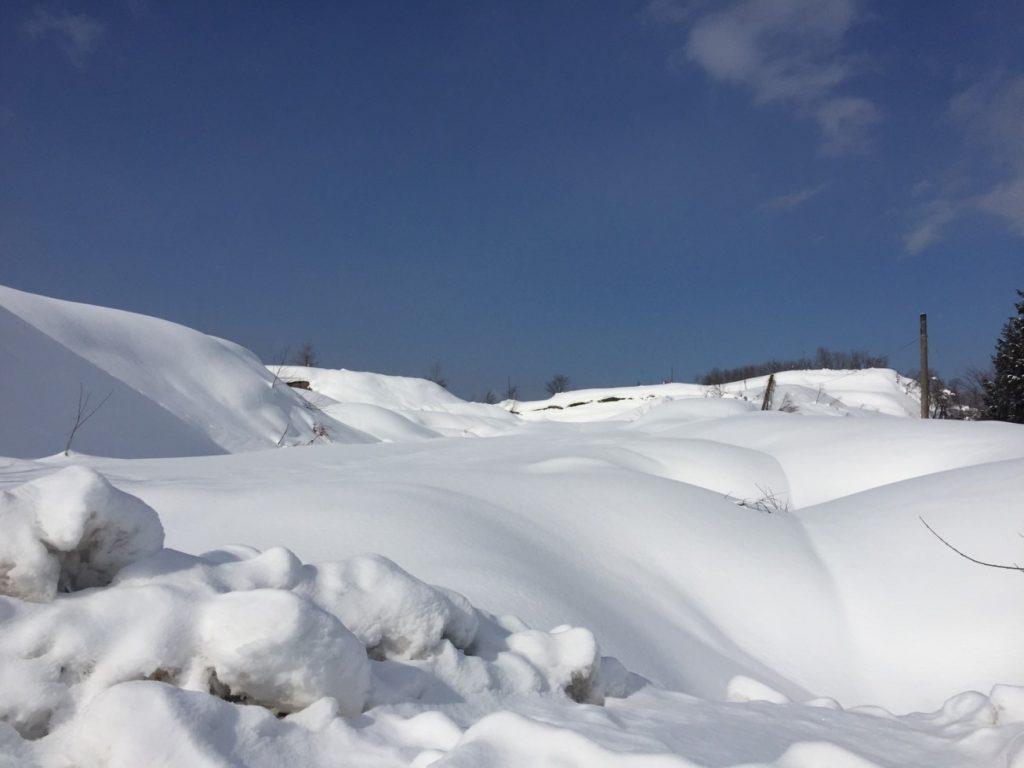 2017.1.21 山形県戸沢村_1954