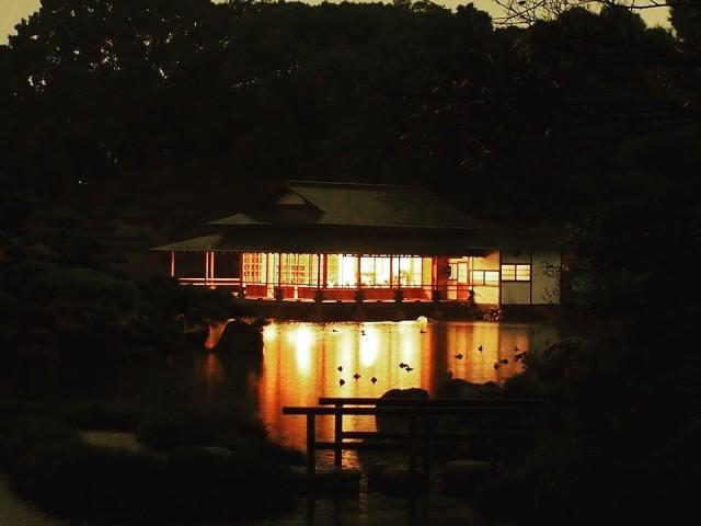 清澄庭園涼亭夜